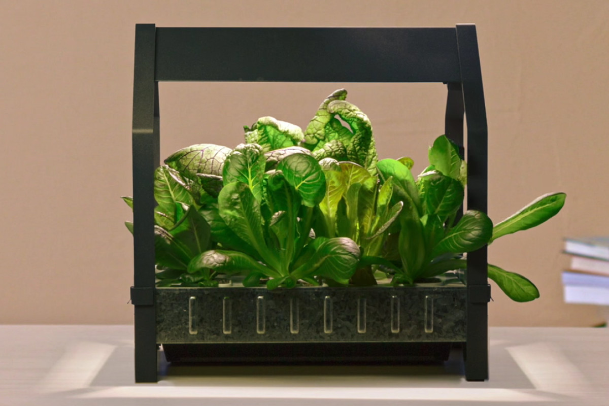 Hydroponic Kitchen Herb Garden Ikea Wants To Put A Hydroponic Garden In Every Home Kitchen Eater