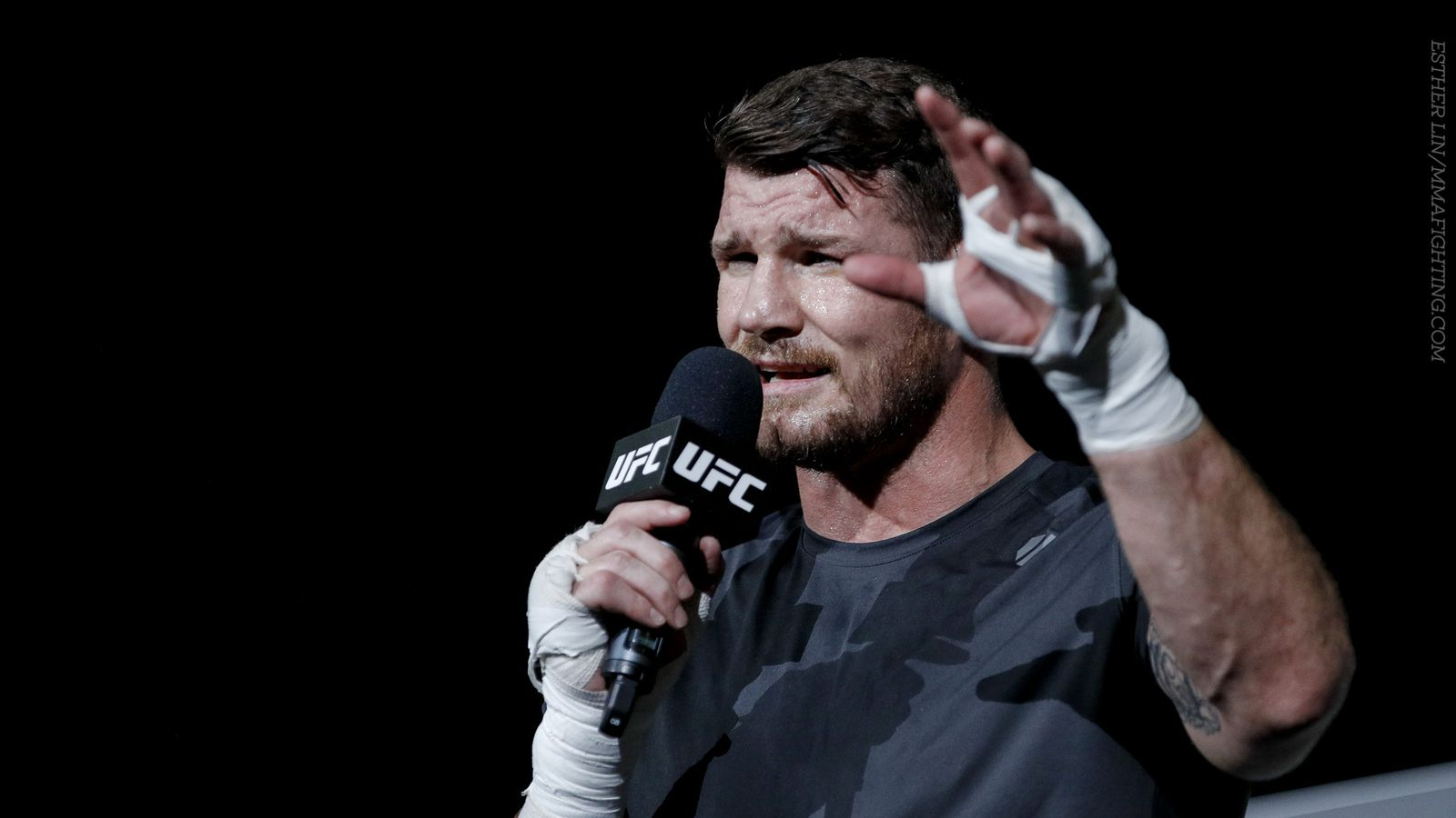 Michael Bisping challe...