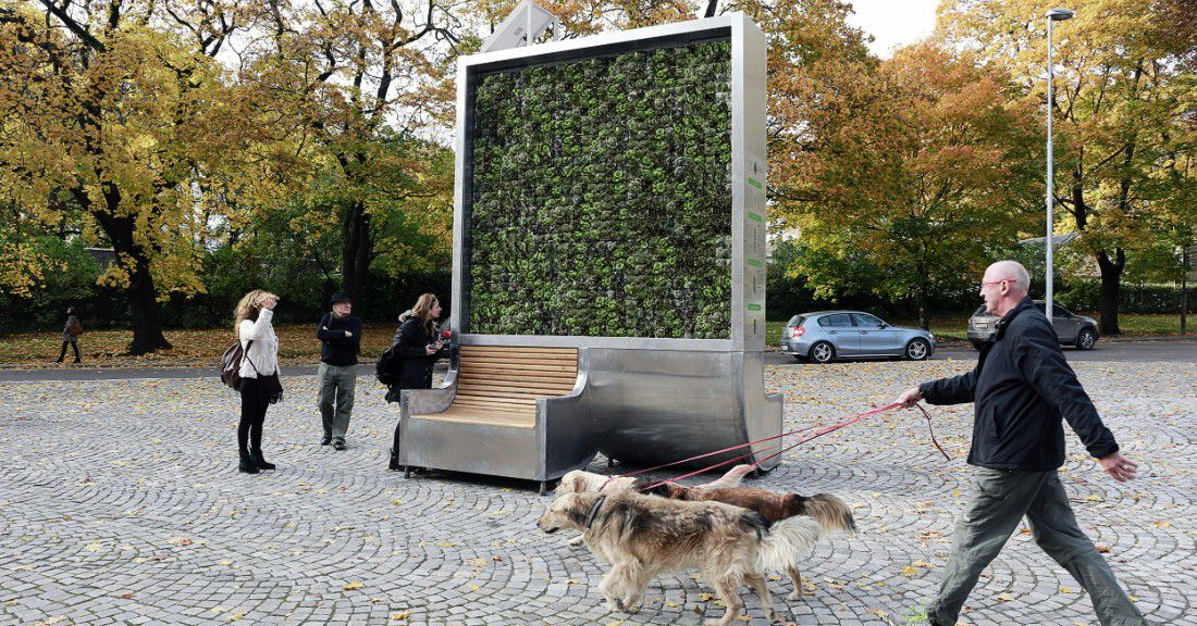 This moss-covered wall is as air-purifying as 275 urban trees