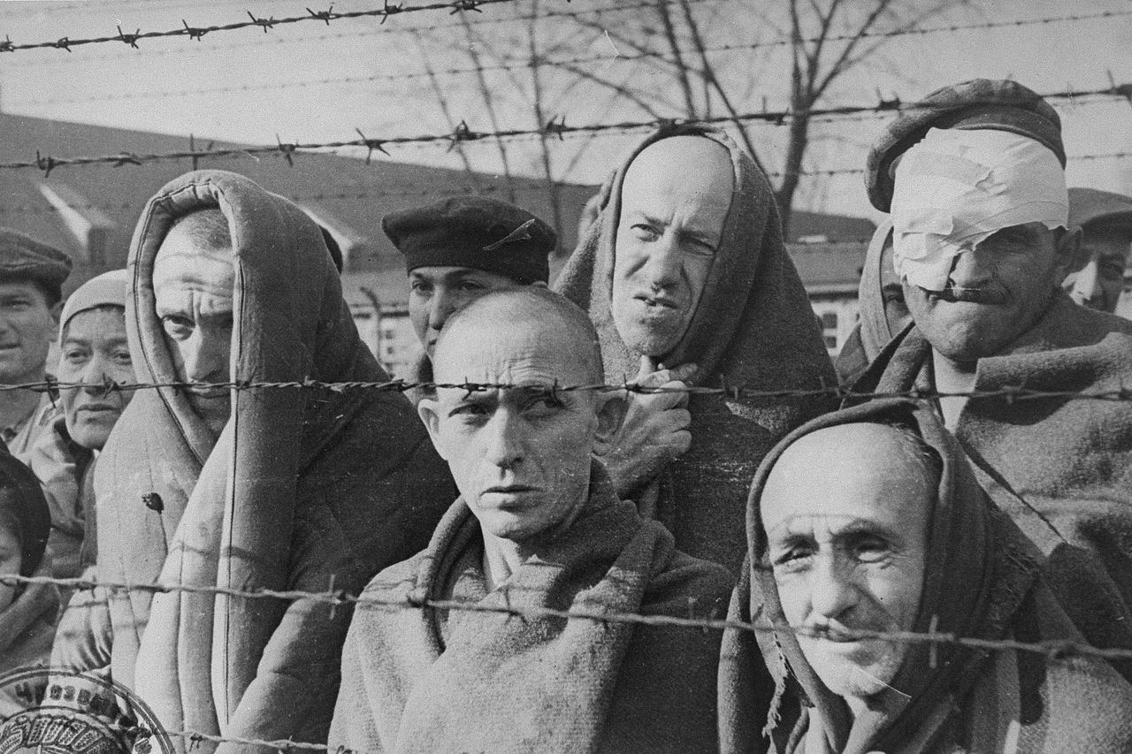 ussr poland hungary essay The road: stories, journalism, and essays  starving ukrainians fled not only to  soviet cities but to poland and romania  when germany invaded the soviet  union on june 22, 1941 (with romanian, hungarian, croatian,.