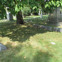 Caruthers family plot, beneath the catalpa tree