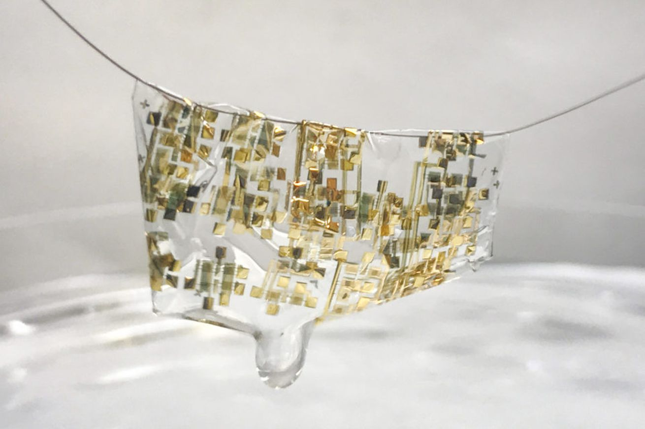 Scientists have created a lightweight wearable that dissolves in vinegar