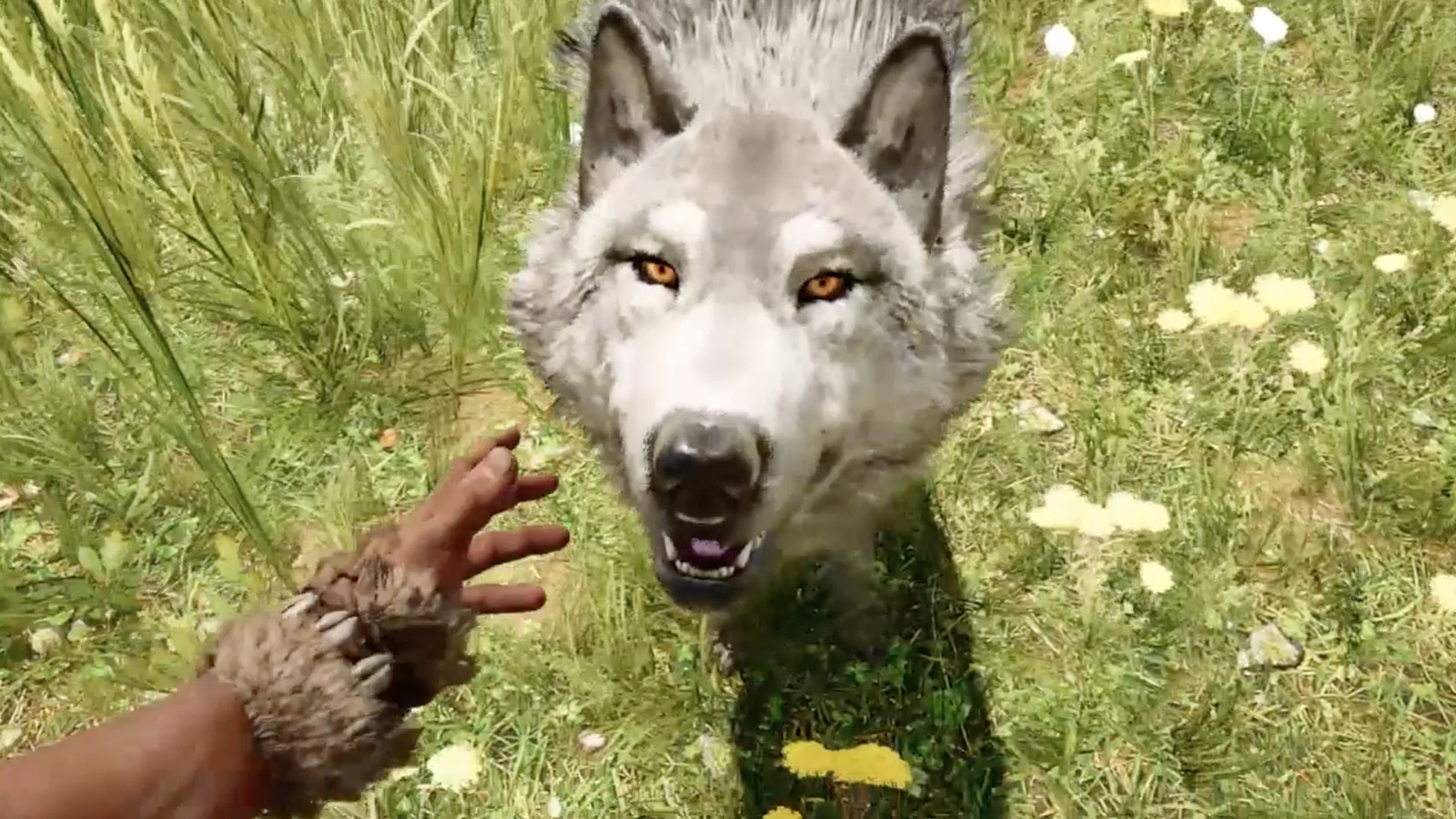 far cry primal how to get more arrows