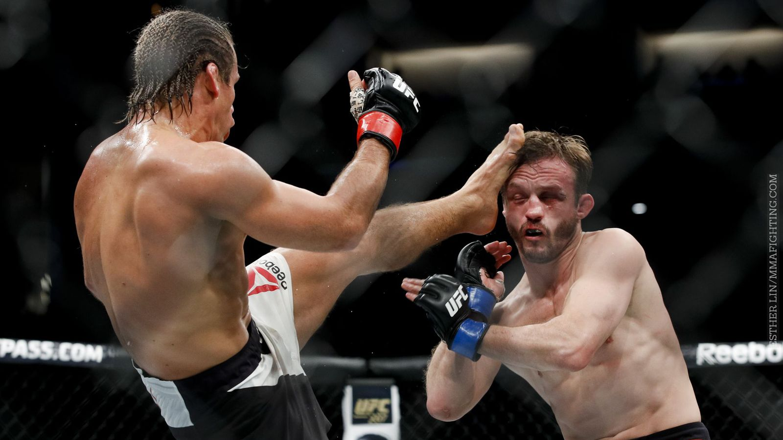 faber fight