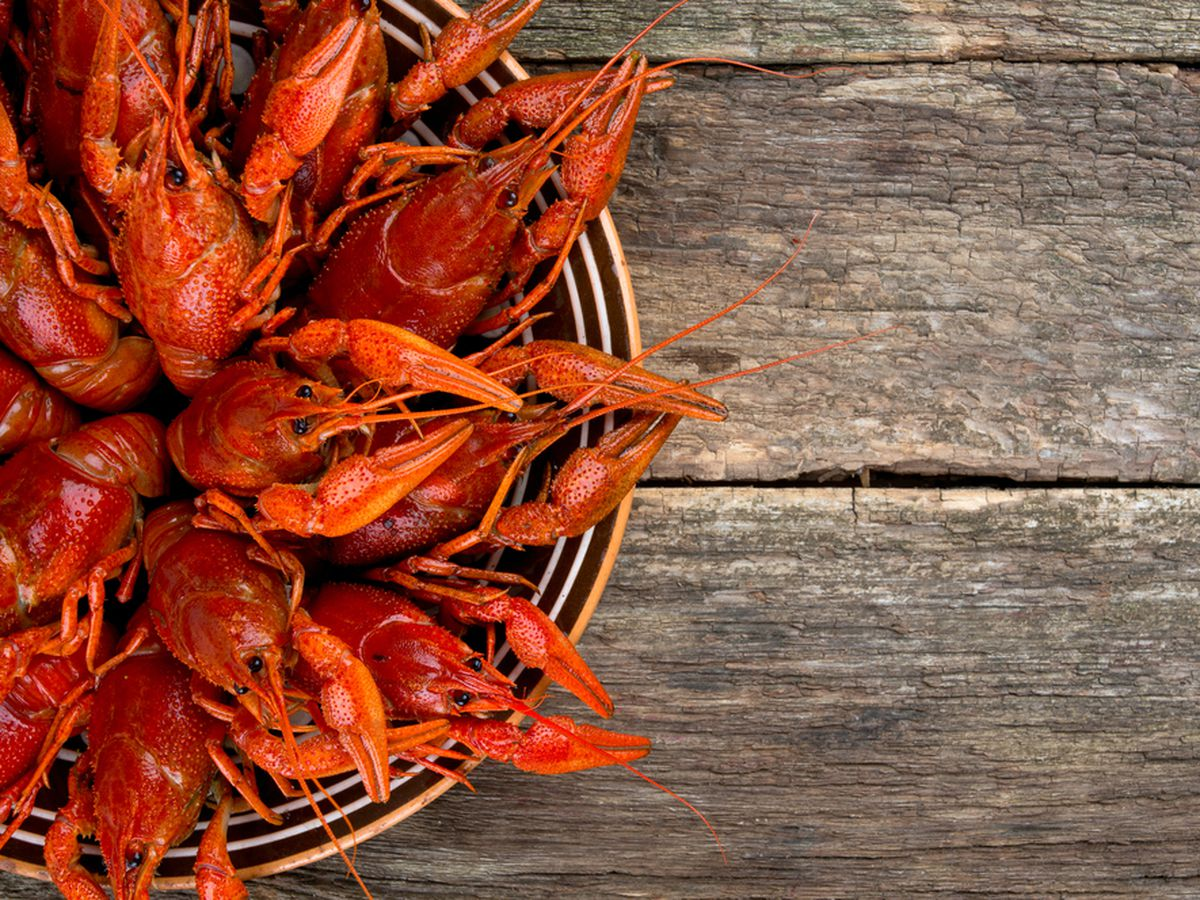 Where To Eat Crawfish In New Orleans Right Now Galley Seafood