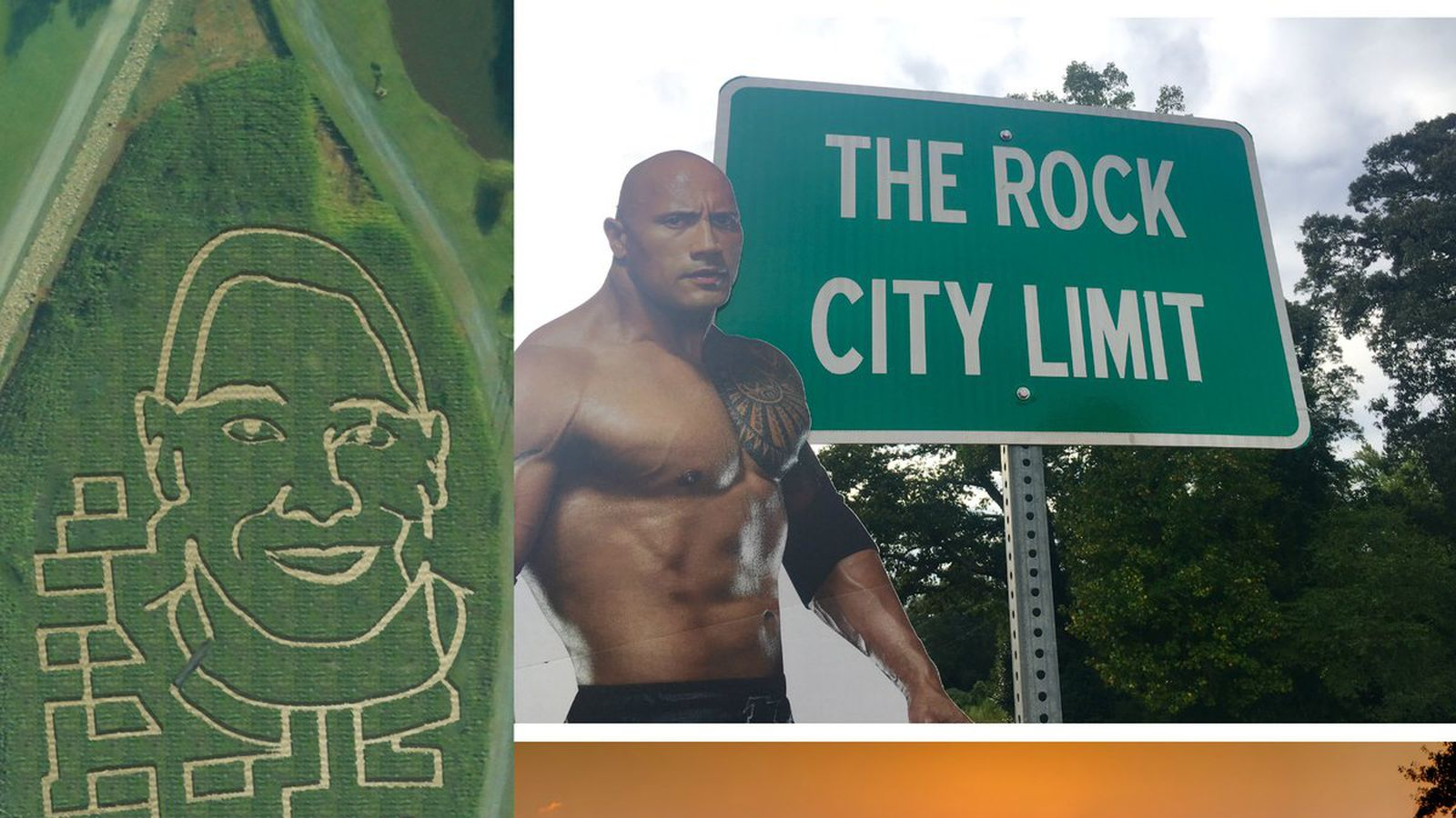 Would you say this Dwayne Johnson corn tribute rocks, or would you say it's a-maize-in?