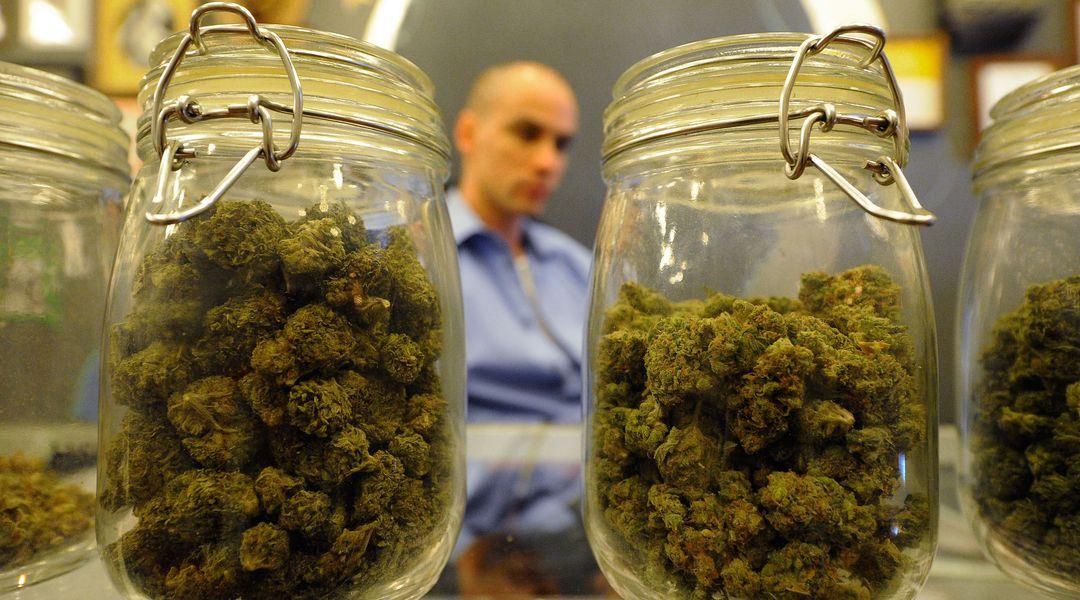 No Marijuana Isn T A Gateway Drug Vox