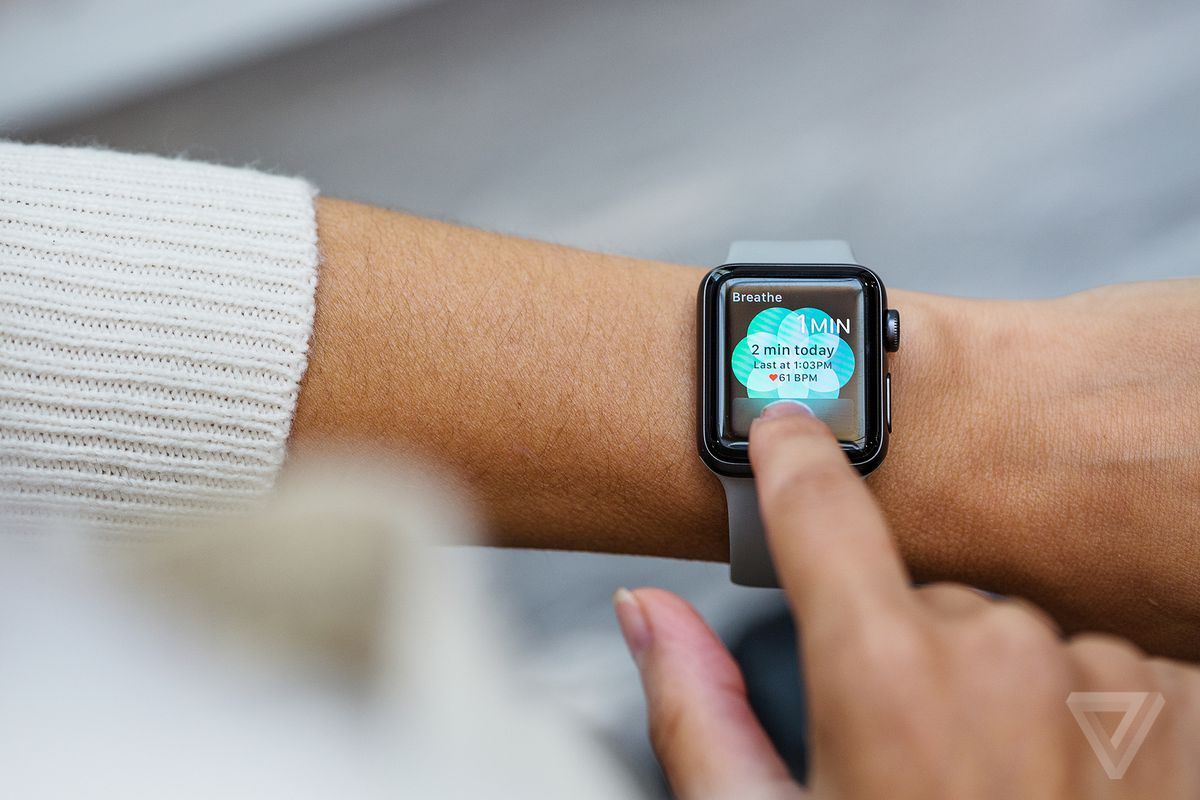 Apple Releases Spring Watch Bands In Cheery Colors The Verge