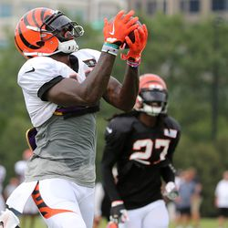Cincinnati Bengals wide receiver Brandon LaFell (11) comes down with an over-the-shoulder catch during Cincinnati Bengals training camp practice on the practice fields at Paul Brown Stadium.