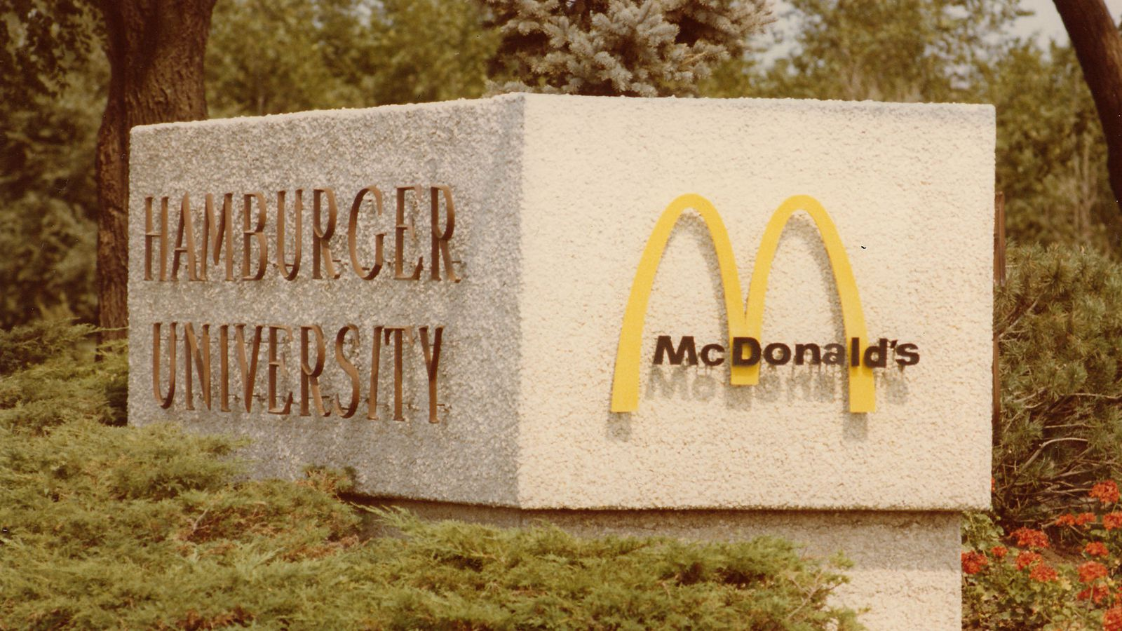 hamburger university Hamburger university (not to be confused with a real institution of the same name) is a 1987 tv commercial starring ronald mcdonald and the hamburglar, featuring the hamburger kids the plot involves ronald teaching his students, anthropomorphic hamburgers, about the hamburglar and his thieving .