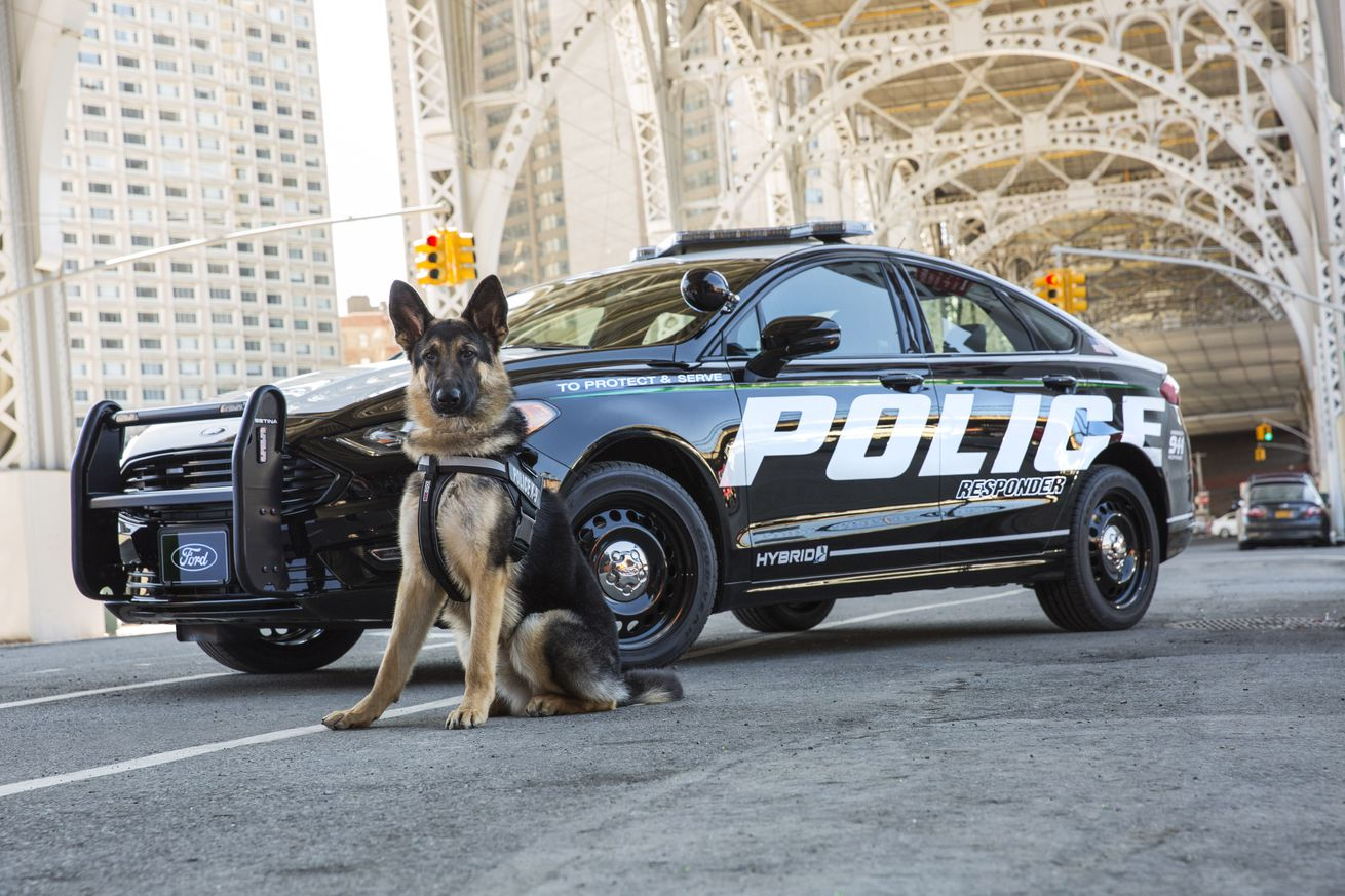 Ford built a hybrid police car designed to handle punishing pursuits