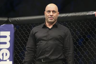 Joe Rogan: UFC colorman, philosopher and recreational drugs enthusiast