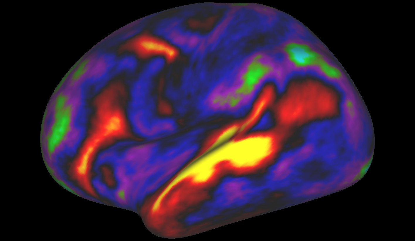Most detailed map of the brain EVER revealed thanks to AI