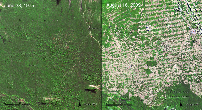 "(<a href=""http://climate.nasa.gov/state_of_flux#Deforestation_Brazil1.jpg"">NASA, Images of Change</a>)"