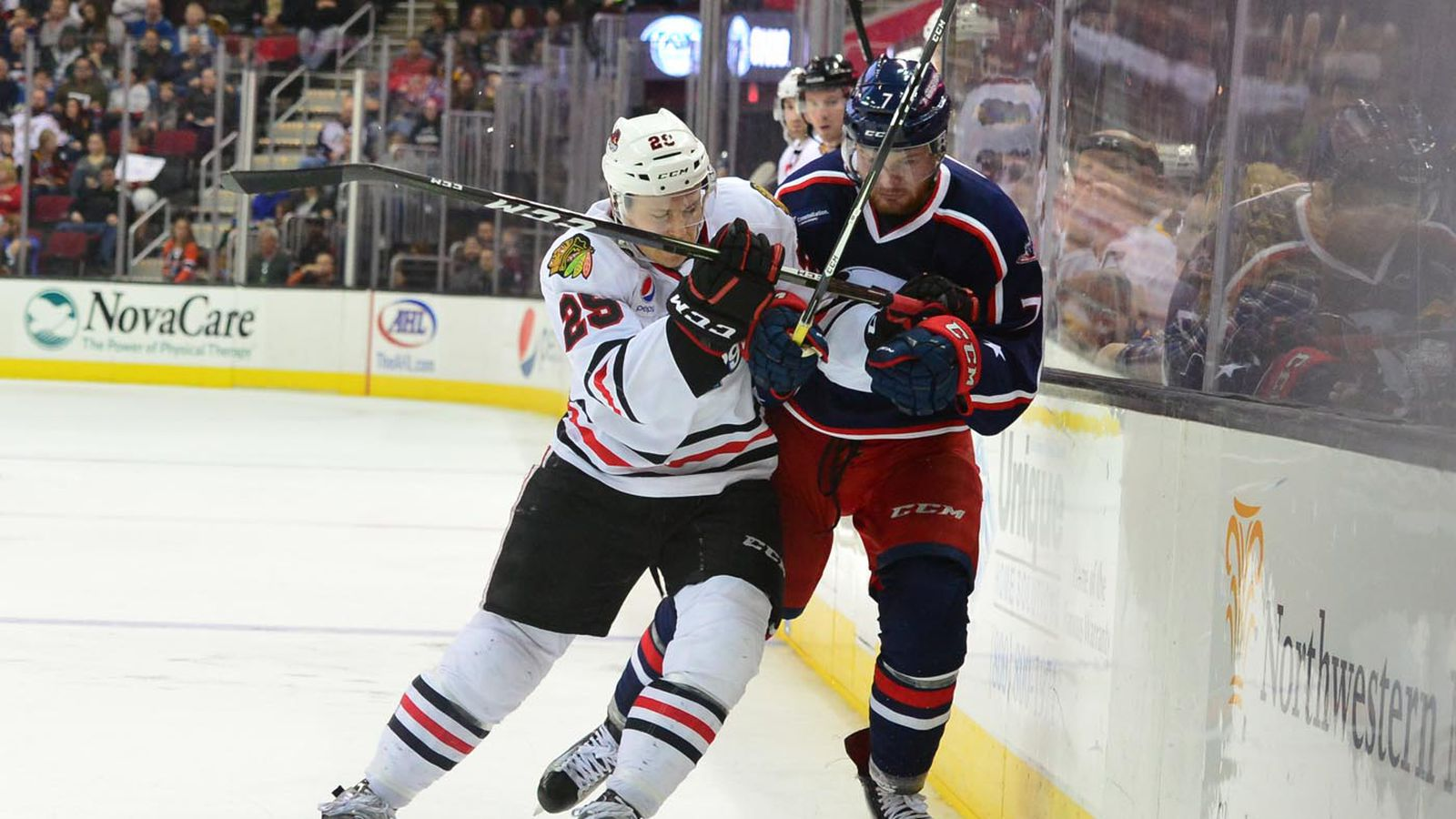 Monsters_icehogs012017_0038.0