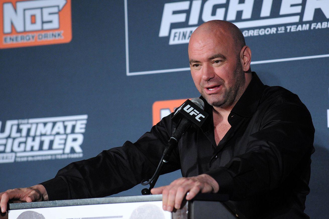 Dana White saves fan stuck with awful seats at UFC 201
