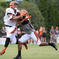 Cincinnati Bengals tight end C.J. Uzomah (87) comes down with a catch during Cincinnati Bengals training camp practice on the practice fields at Paul Brown Stadium.