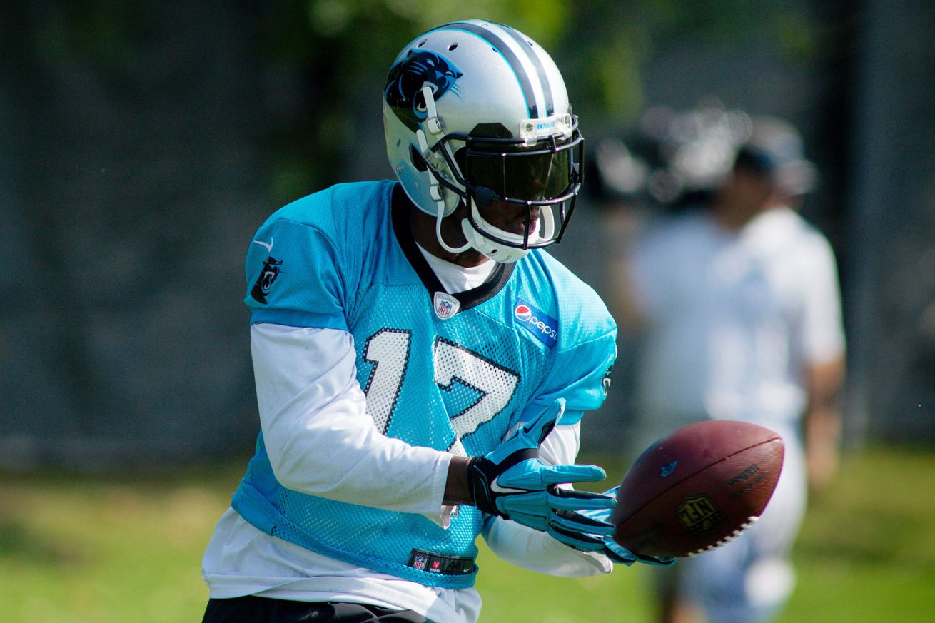 Jerseys NFL Wholesale - Carolina Panthers OTA and Mini-Camp Wrap Up - Cat Scratch Reader