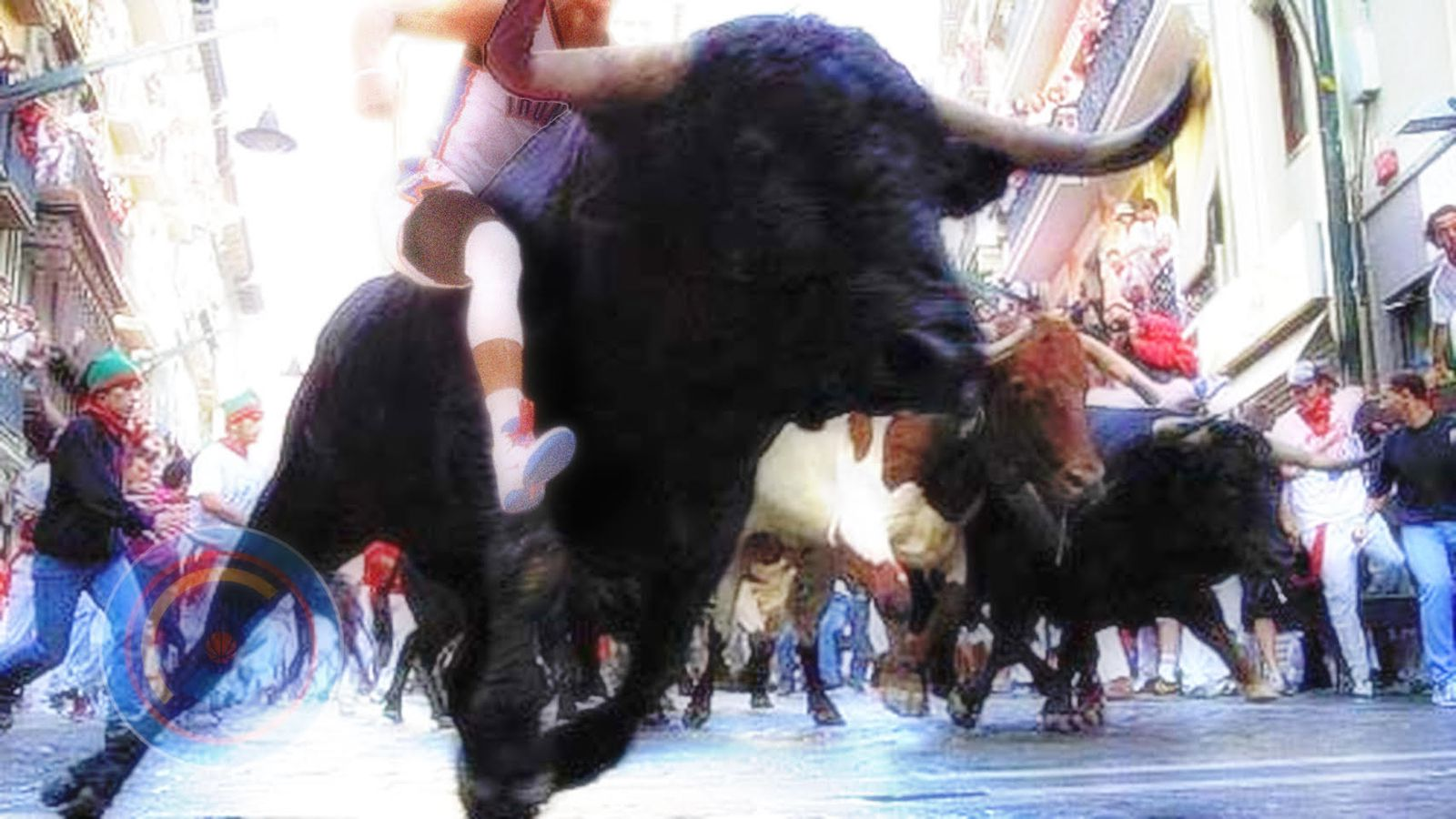 Bulls.0