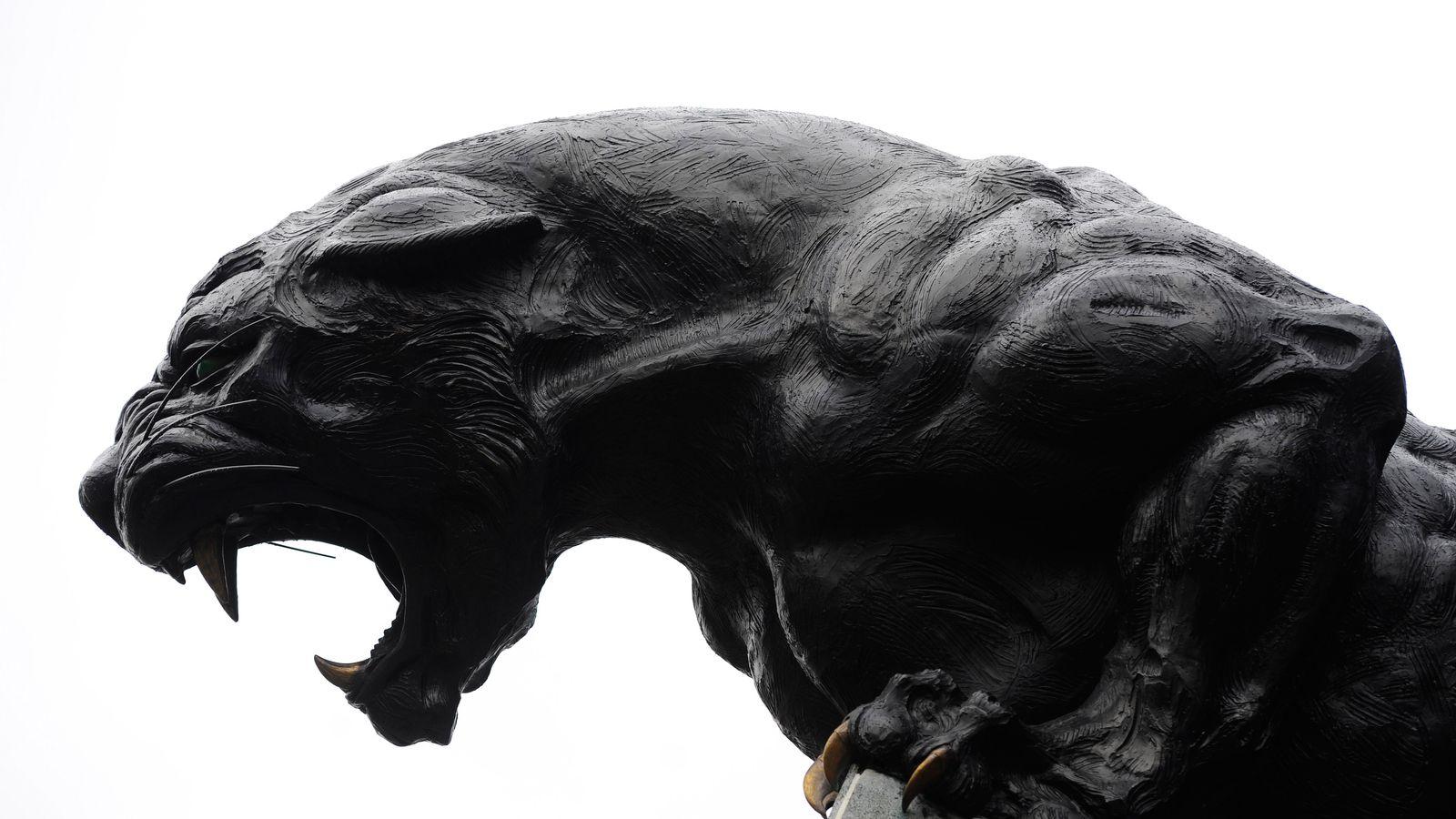 Carolina Panthers David Yankey GAME Jerseys