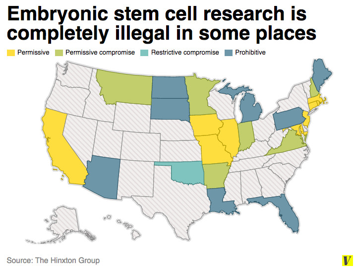 Why is there so much controversy about stem cell research?