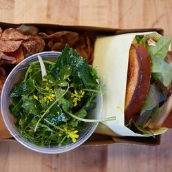 Lunchbox with hamburger sandwich, potato chips, and herb salad