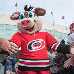 Stormy. September 10, 2017. Canes 5k benefitting the Carolina Hurricanes Kids 'N Community Foundation, PNC Arena, Raleigh, NC