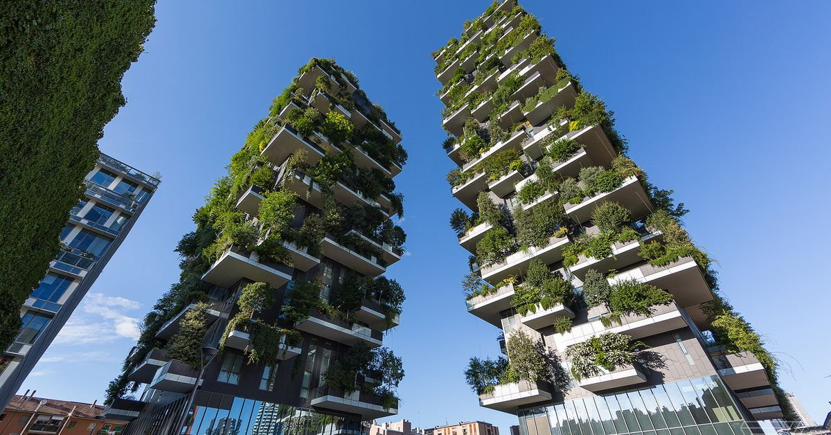 High rise forests in italy are fighting air pollution for Pollution fighting plants