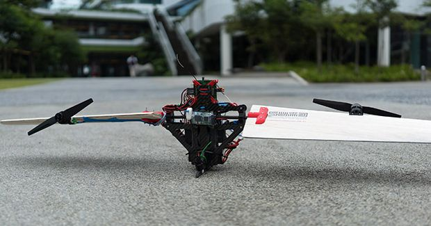 This Transforming Drone Can Fly like an Airplane and Spin like a Seed