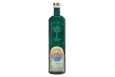 ginbottle.0.jpg