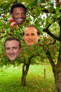 Coaching Tree