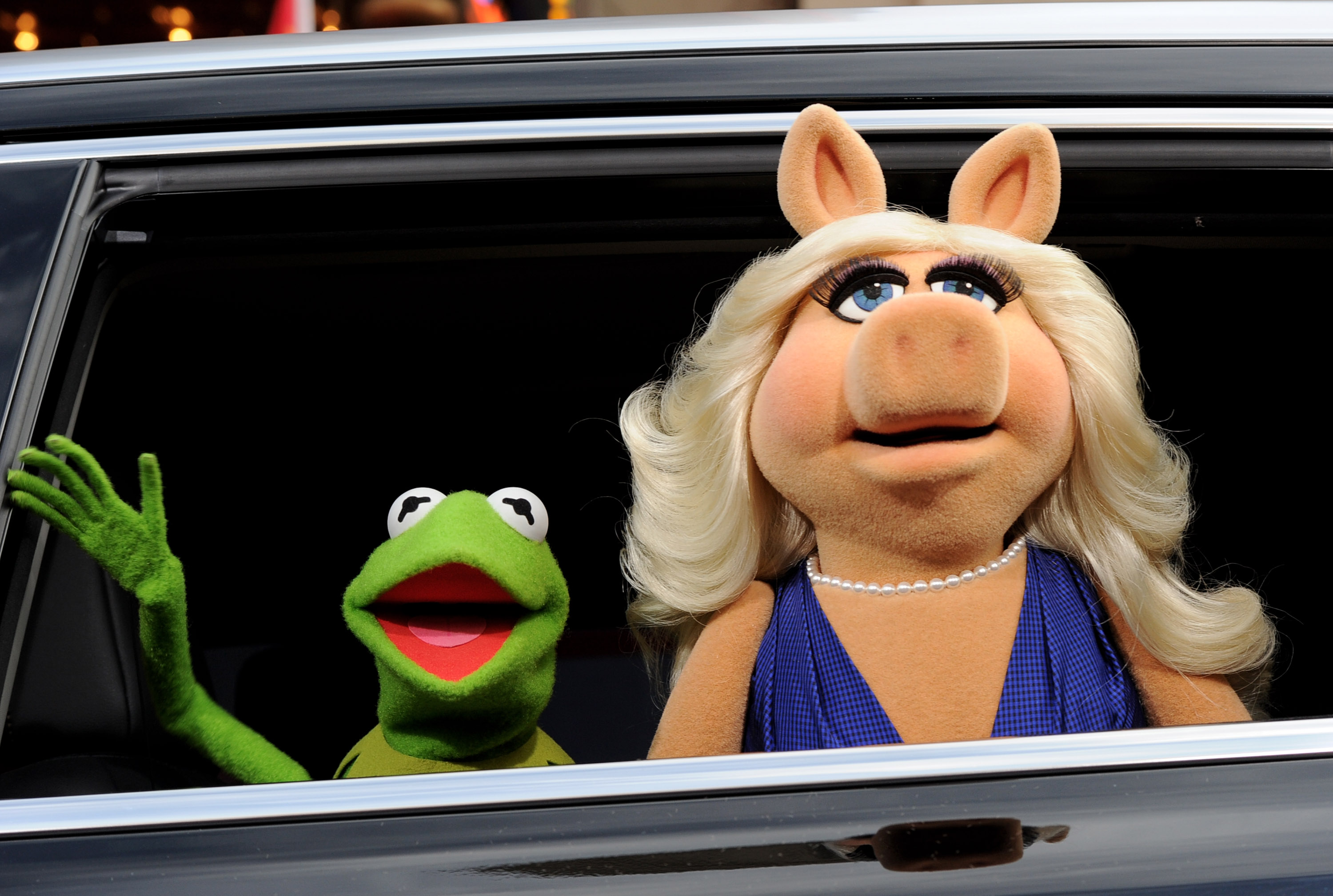 kermit divorced singles personals Dating moi is like flying close to the sun, miss piggy said at the television critics association gathering tuesday it was inevitable that kermit would drop down to the ground while i stayed in the heavens.