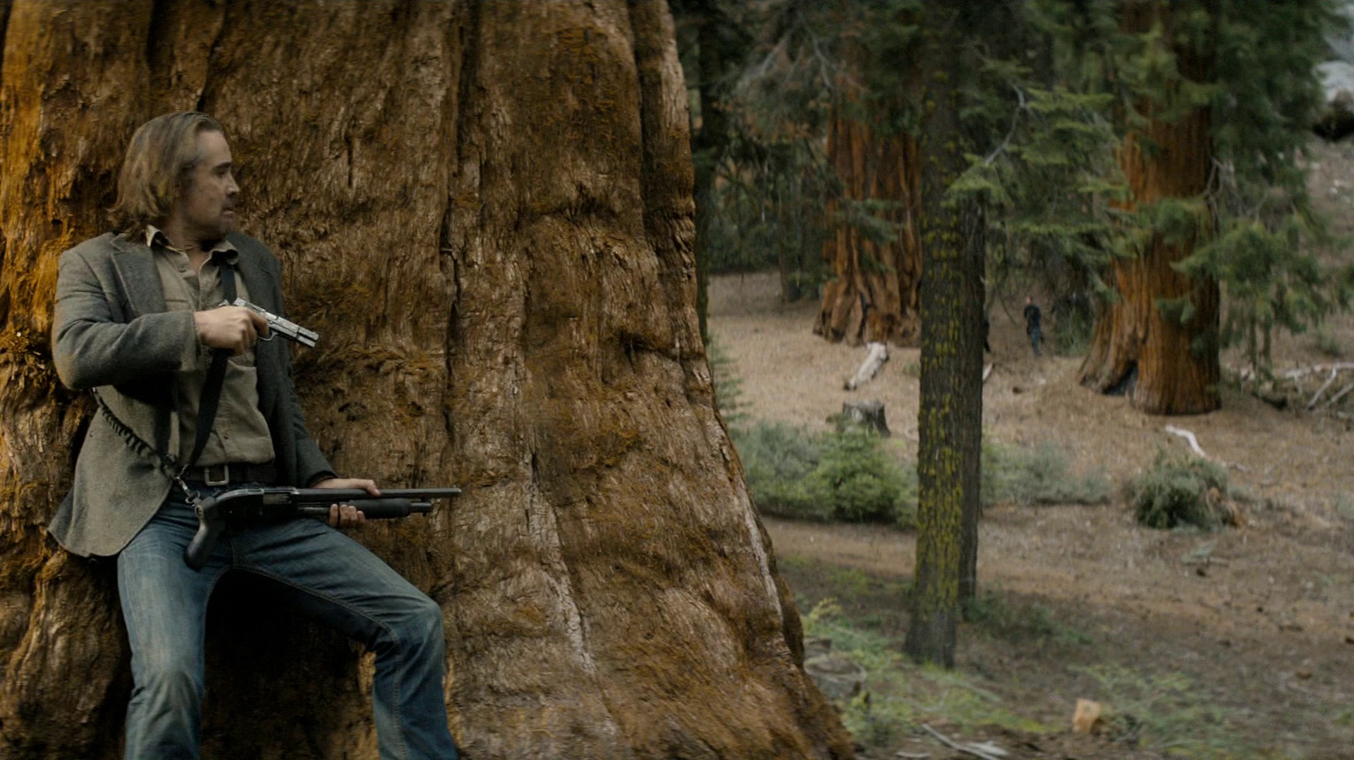 Ray takes cover behind a redwood