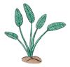 tiny-Plant-In-Ground.0.jpg