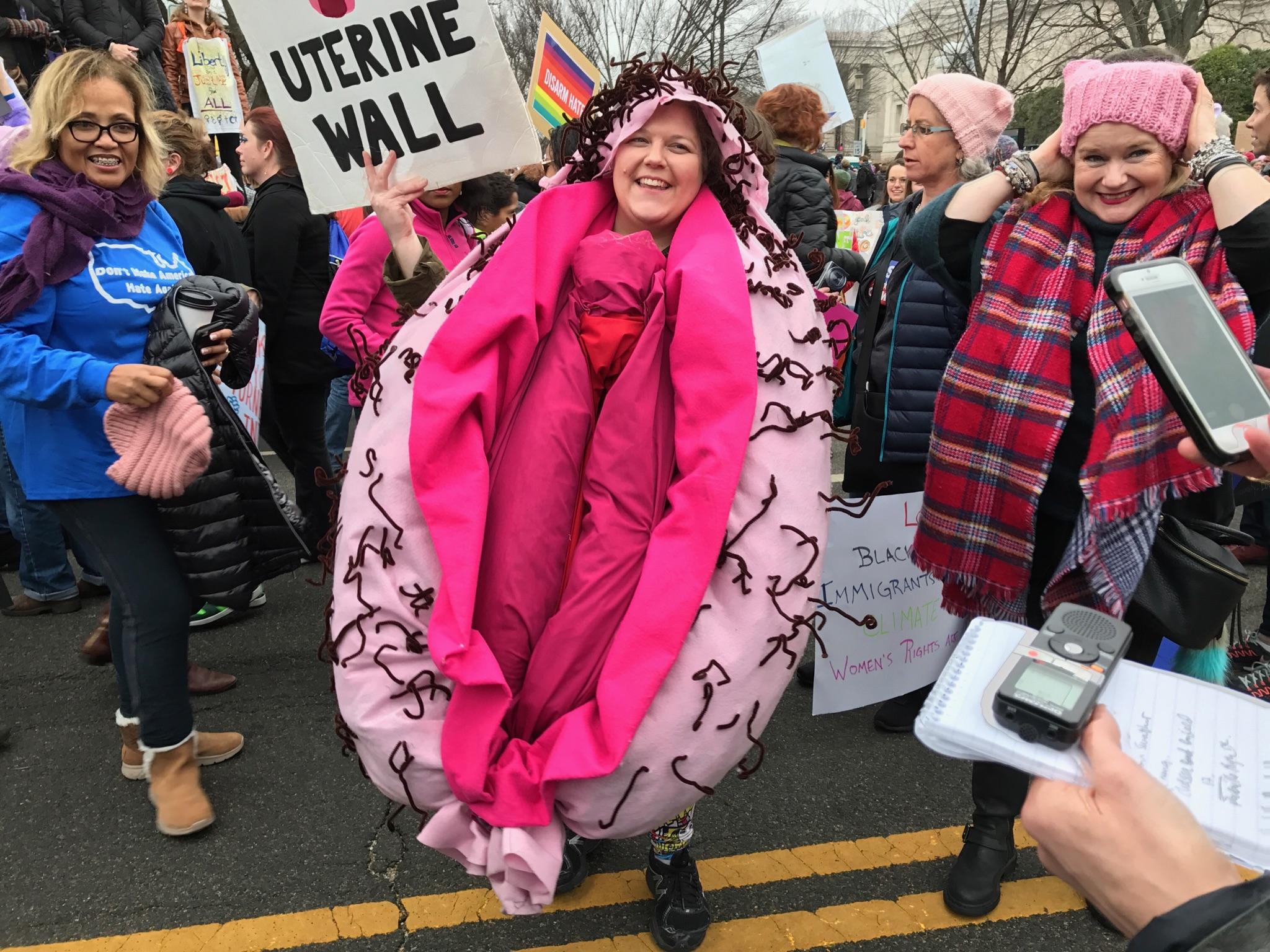 Image result for washington womens march hijab vagina
