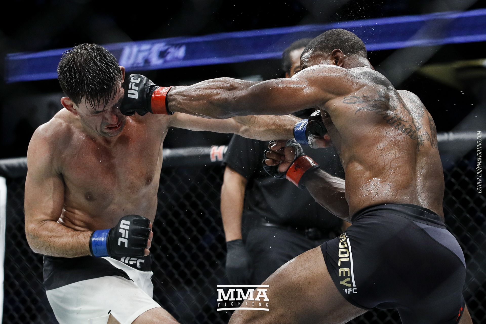 UFC 214 photos