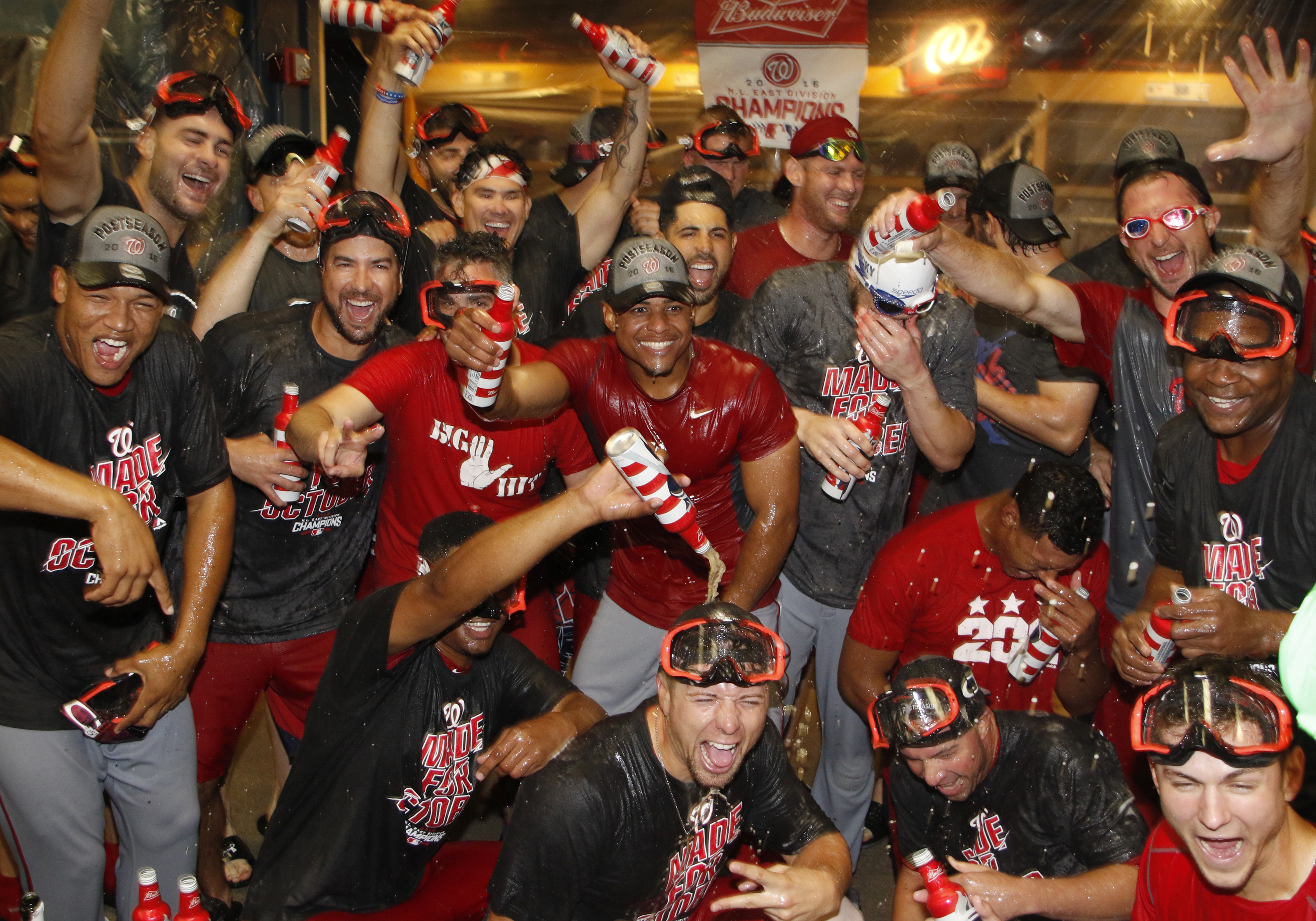 Image result for washington nationals 2016 nl east champions